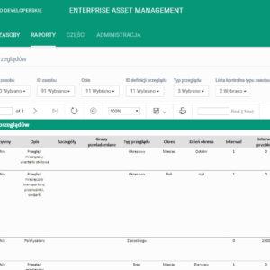 EAM 4FACTORY - raport definicji przeglądów